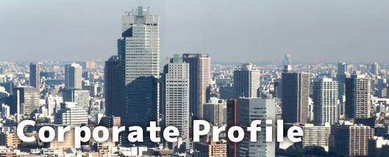Corprate Profile